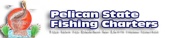 New Orleans Fishing Charters Pelican State Fishing Charters