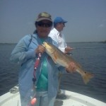 Nice redfish onboard with Pelican State Fishing Charters